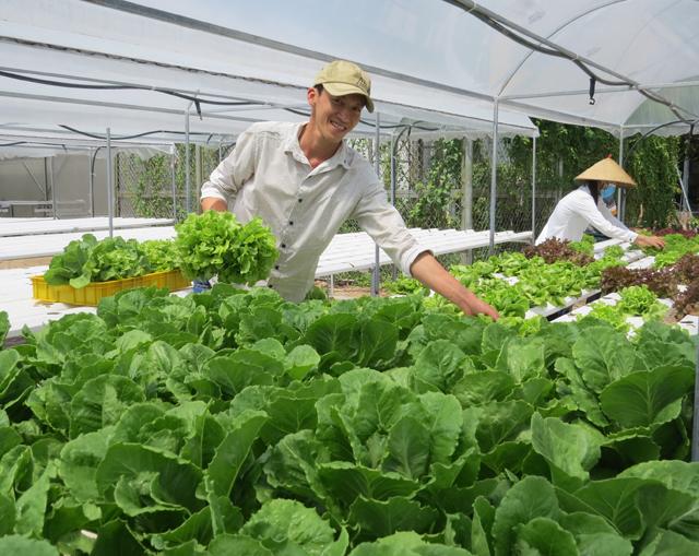 Công nghệ cao góp phần nâng cao chất lượng, giá trị nông sản