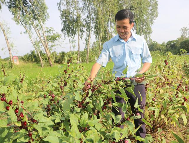 """Trai """"gàn dở"""" trồng cây ra trái đỏ tươi, thế mà lại ăn nên làm ra"""