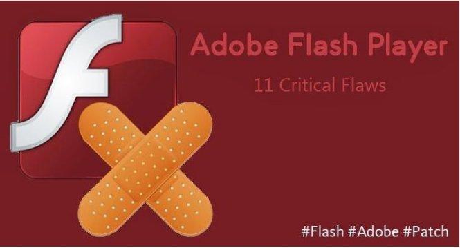 Người dùng nên nhanh chóng cập nhật Adobe Flash Player lên phiên bản mới  nhất